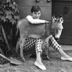 Audrey Hepburn and a Donkey