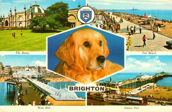 Brighton post card